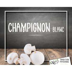Champignon blanc (500g)