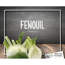Fenouil (500g)