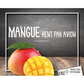 Mangue (l'unité)