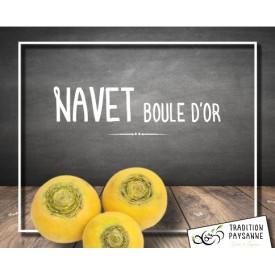 Navet boule d'or (500g)
