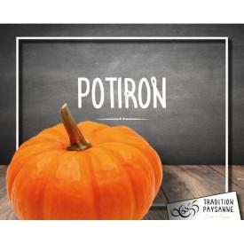 Potiron (1 KG)