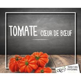 Tomate Cœur de Bœuf de...