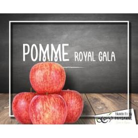 Pomme Royal Gala (500g)
