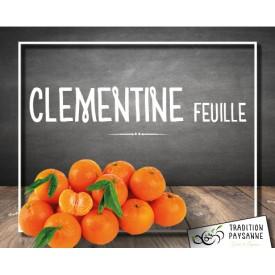 Promo Clémentine (2 Kg)