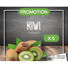 Promo Kiwi vert (5 pièces)