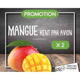 Promo Mangue (2 pièces)