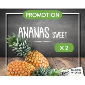 Promo Ananas (2 pièces)
