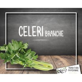 Céleri Branche (500g)