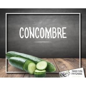 Concombre Français (l'unité)