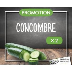 Concombre français X 2