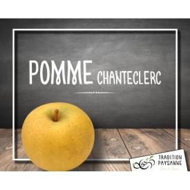 Pomme Chanteclerc (500g)