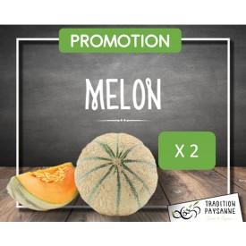 Melon de Camargue X2
