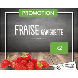 Fraise Gariguette (250GR) x2