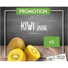 Kiwi Jaune (5 pièces)