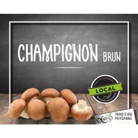 Champignon BIO brun (500g)
