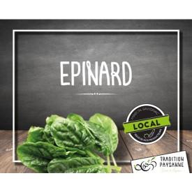 Epinard (800g)