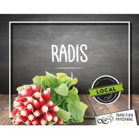 Radis Français LOCAL (la...