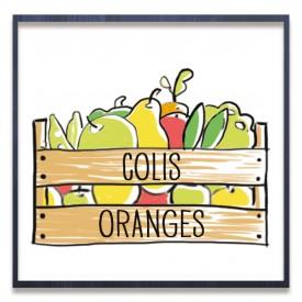 Colis Oranges 5Kg
